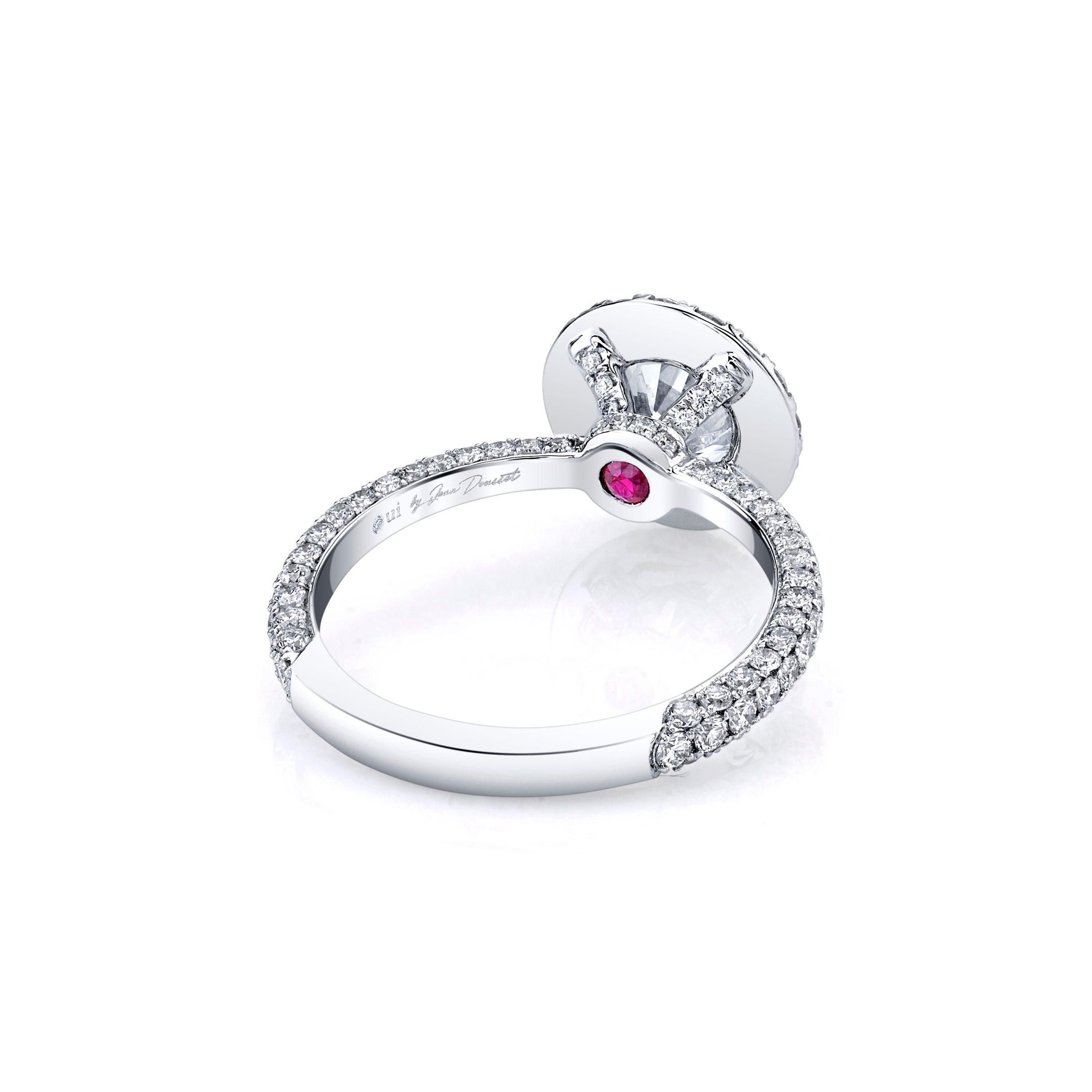Jacqueline Seamless Halo® Round Brilliant Engagement Ring 18k White Gold Back Shot