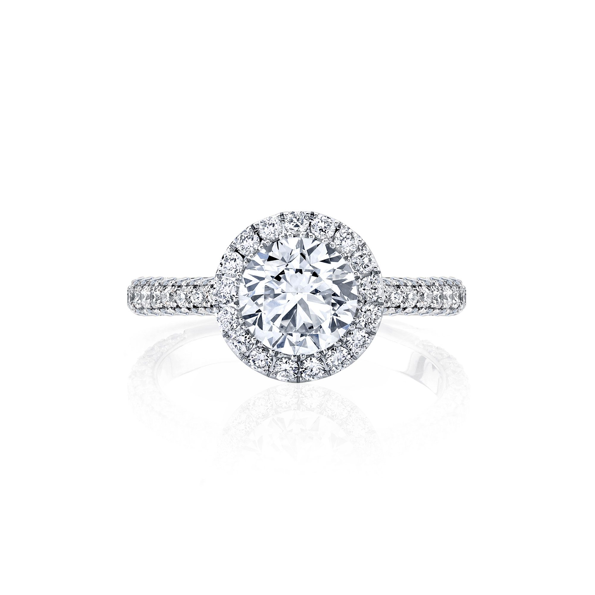 Jacqueline Seamless Halo® Round Brilliant Engagement Ring White Gold Front Shot